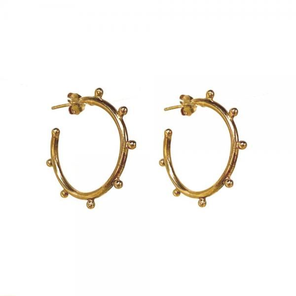 Small_hoop_earrings_